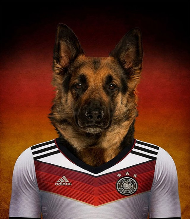 Dogs-of-World-Cup-Brazil-20142-640x736